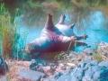 Flodhäst död i mjältbrand